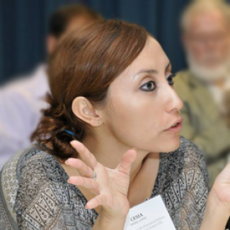 Cesia-Lopez Angel, Enterprise Rose Architectural Fellow 2013-2015